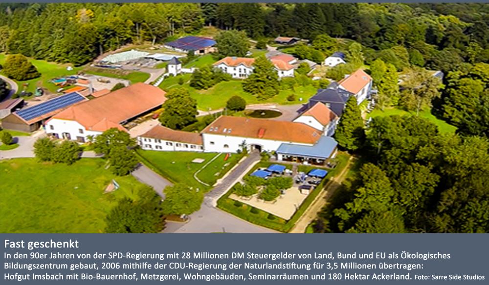 Luftaufnahme Imsbach Kopie